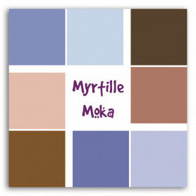 Set de 20 feuilles de scrapbooking 30x30 cm Myrtille Moka - Collection Sorbet - Toga