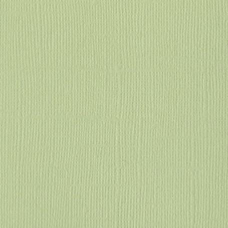 Papier 30x30 Texturé Aloe Vera – Bazzill