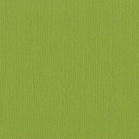 Papier 30x30 Texturé Parakeet - Perroquet – Bazzill