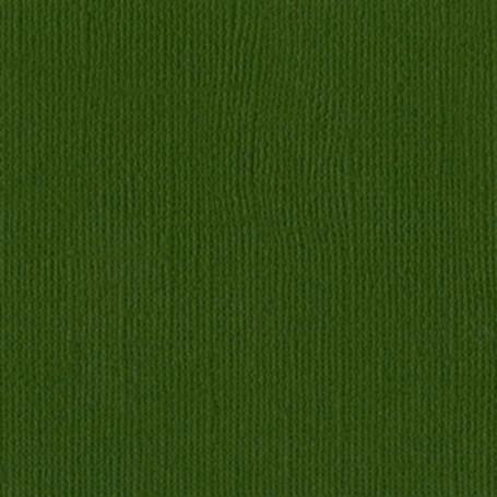 Papier 30x30 Texturé Ivy - Lierre Vert foncé – Bazzill