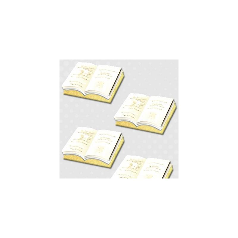 Embellissements 3D Livre M201 – Inspiration - Ursus