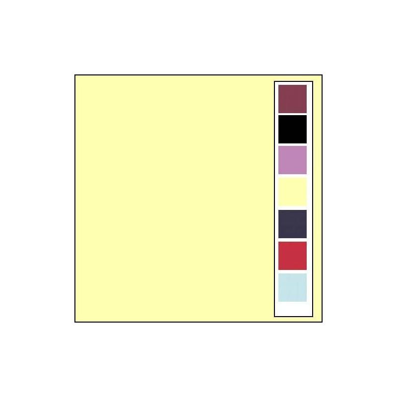 Carton texturé 13,5x27 Crème 10 pièces