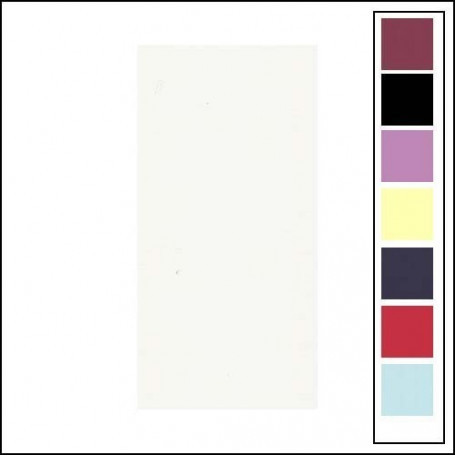 Carton texturé 13,5x27 Blanc 10 pièces