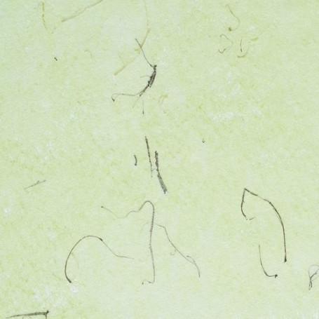 Non-tissé de papier Vert Pomme avec fibre naturelle Creapop – Hobbyfun