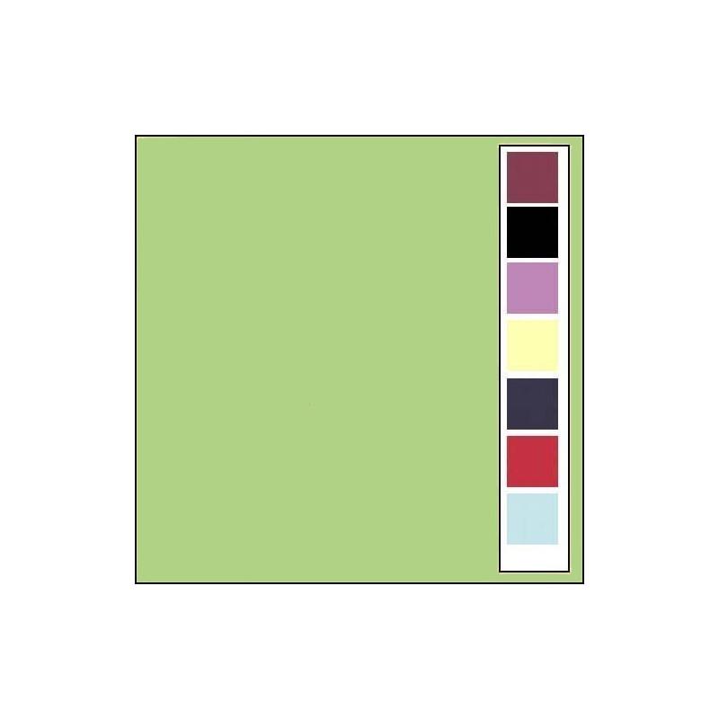 Carton texturé 13,5x27 Vert Printemps 10 pièces