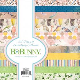 Set de papier 15x15 Serendipity 36f – Bo Bunny