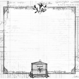 Papier 30x30 Cabinet de Curiosités 01 - 1f - Toga