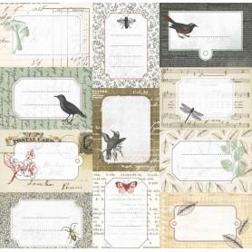 Papier 30x30 Cabinet de Curiosités 04 - 1f - Toga