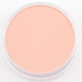 PanPastel Red Iron Oxide Tint 380.8