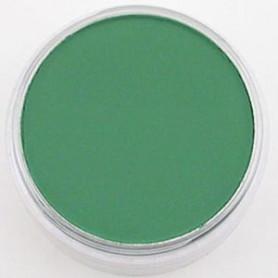 PanPastel Permanent Green Sade 640.3