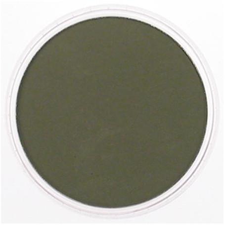 PanPastel Bright Yellow Green Extra Dark 680.1