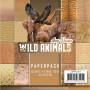 Set de papier 15x15 Wild Animals 1 23f – Amy Design