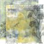 Set de papier 30x30 Botanico 1 6f - ConHilos